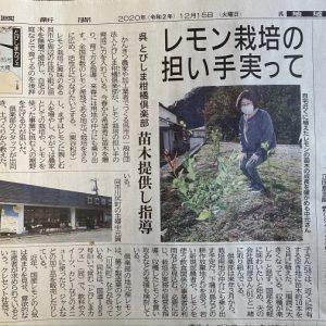 中国新聞に掲載されました とびしま柑橘倶楽部