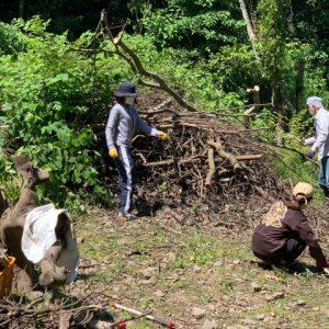 ボランティアさんと開拓伐採 耕作放棄地